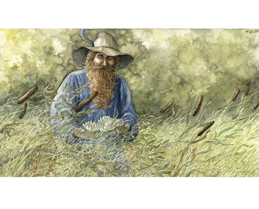 Tom Bombadil (c) by Anke Eissmann
